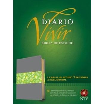 Biblia de estudio del diario vivir NTV piel italiana gris/verde con índice