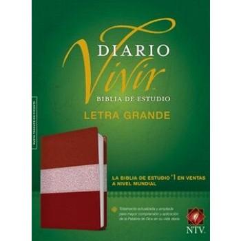 Biblia de estudio del diario vivir NTV, letra grande i/piel rosa/fucsia con índice