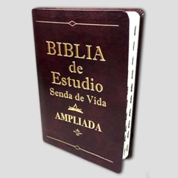 Biblia de estudio Senda de Vida RVR60 Piel Vino índice