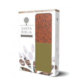 Santa Biblia RVR 1960 - Letra grande, imitación piel verde/marrón, imágenes de de Tierra Santa