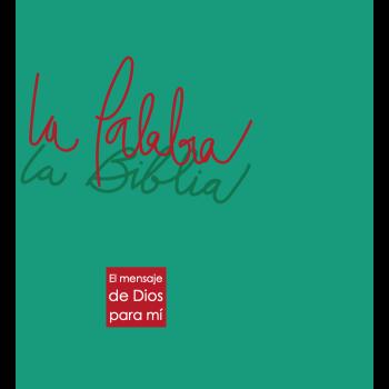 BLP La Palabra 3º Ed. Letra Grande Rústica con solapas Concordancia Verde/Rojo